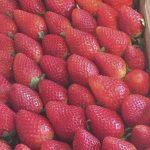Dieta come dimagrire per l'estate ecco 10 consigli utili per perdere peso